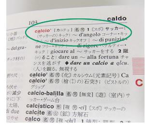 イタリア語を学ぶなら日本外国語...
